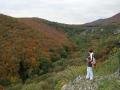 Jesenné Malé Karpaty nad hradiskom Molpír